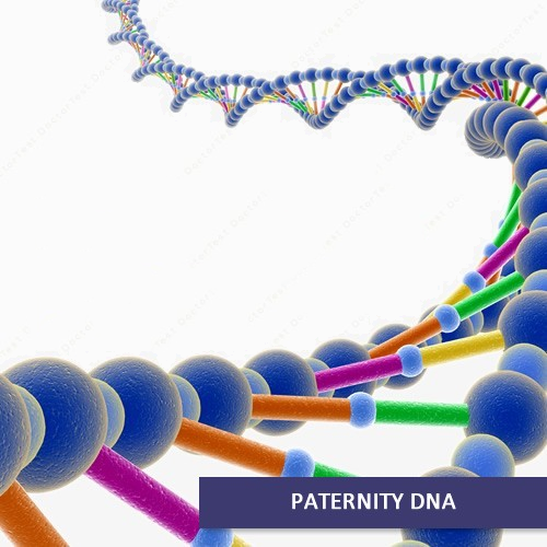 Home DNA Paternity Test